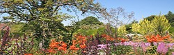 The Great Dixter